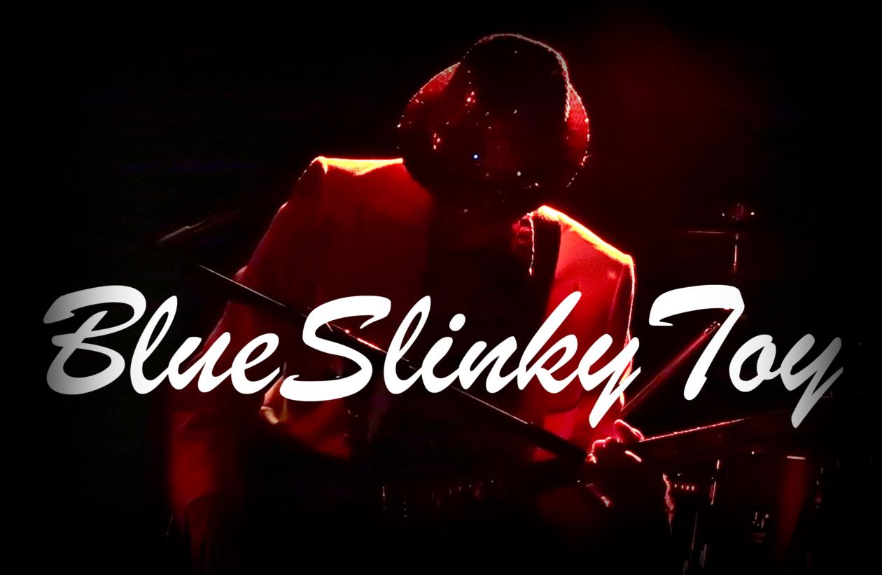 blueslinkytoy.com